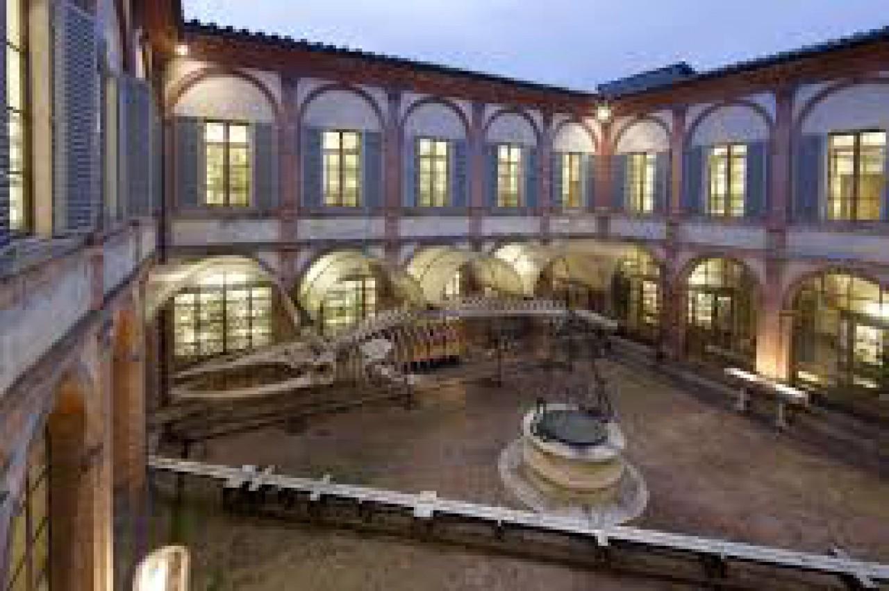 La Notte dei Ricercatori 2015 - IL MUSEO IN TASCA