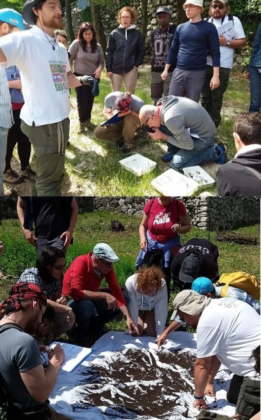 Terrazzamenti e biodiversità