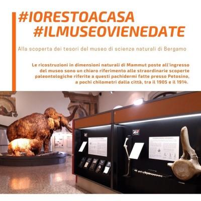 #iorestoacasa #ilmuseovienedate