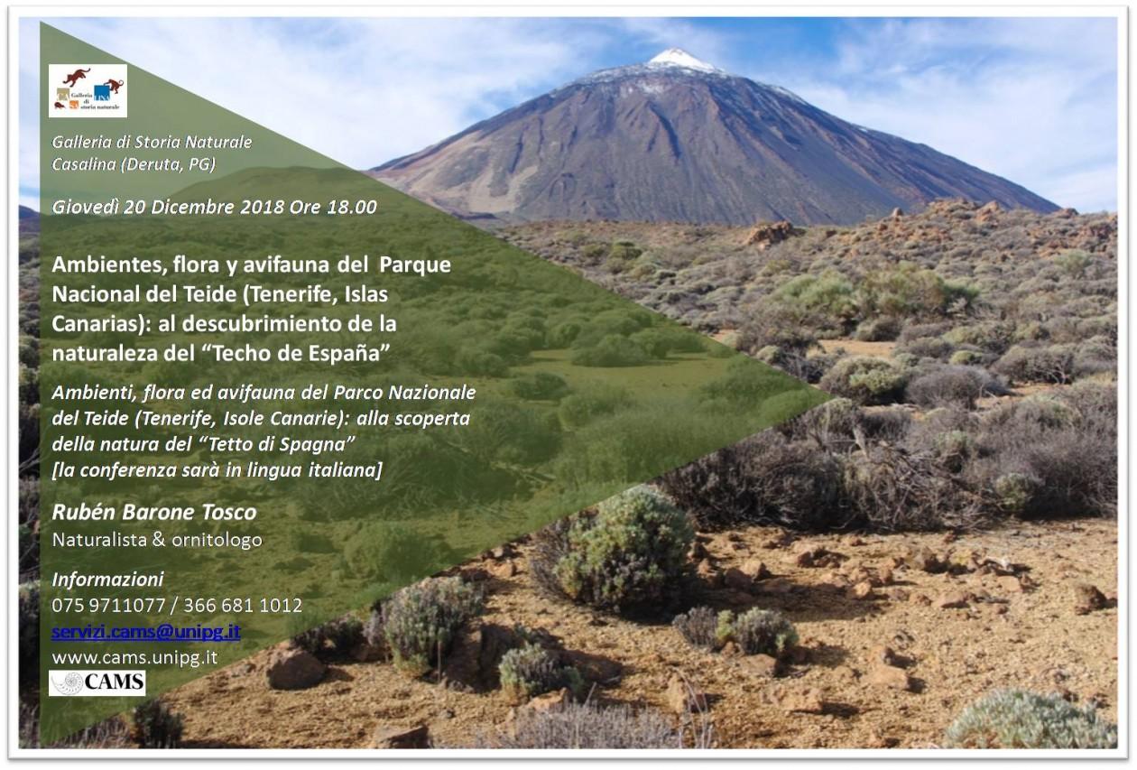 """Ambienti, flora ed avifauna del Parco Nazionale del Teide (Tenerife, Isole Canarie):  alla scoperta della natura del """"Tetto di Spagna"""""""