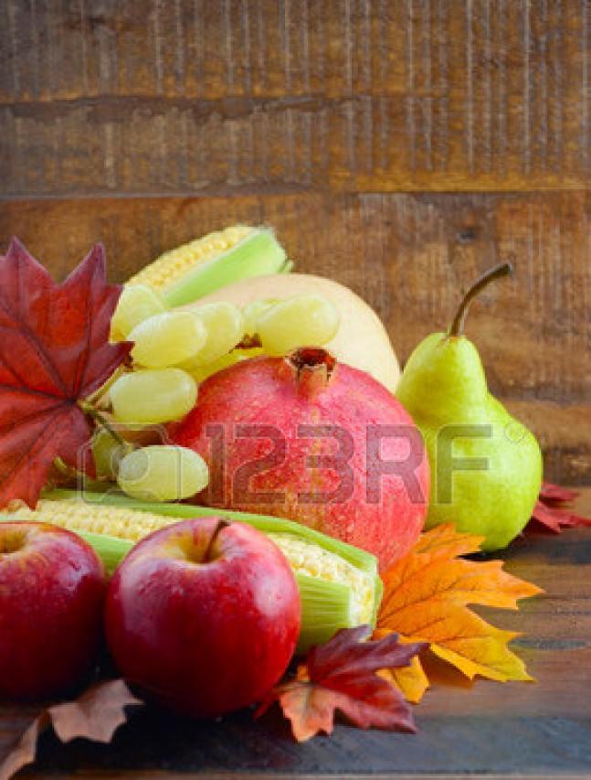 A caccia di frutti e foglie in autunno