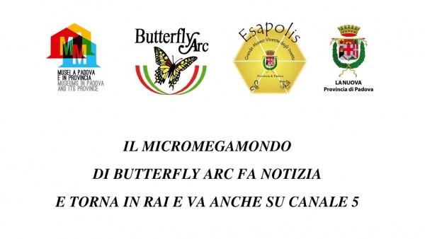 IL MICROMEGAMONDO DI BUTTERFLY ARC FA NOTIZIA