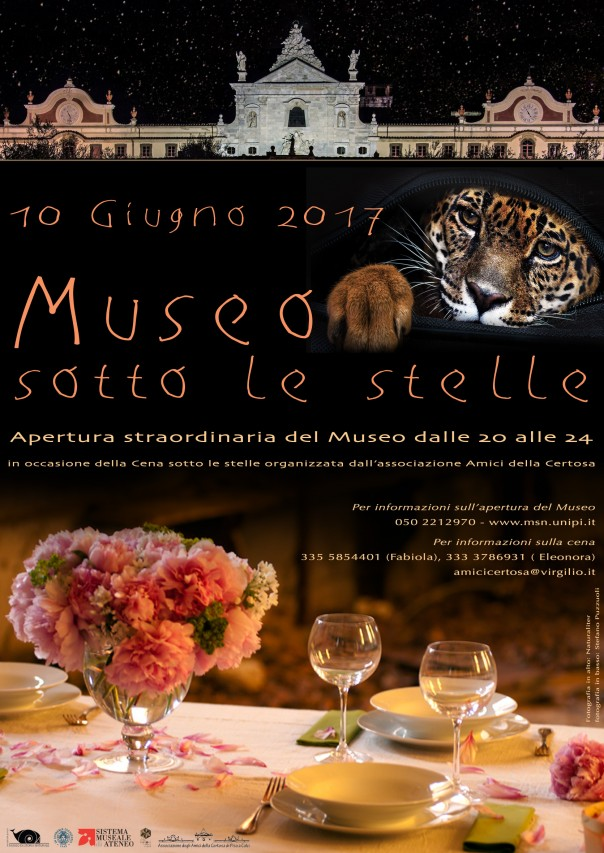 Museo sotto le stelle