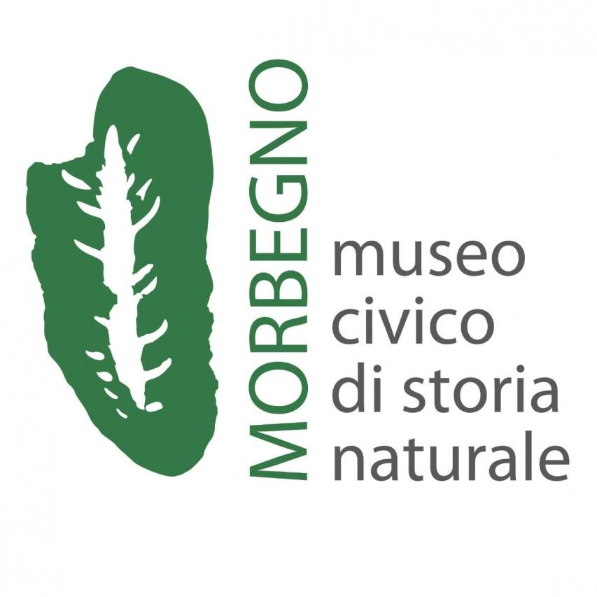 Chiusura Museo fino al 3 aprile 2020