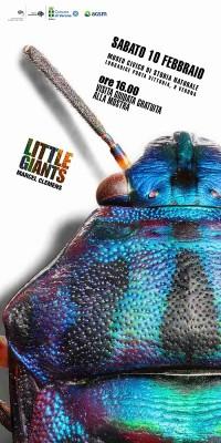 Visita guidata alla Mostra Little Giants