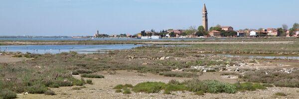 L'economia della Laguna Veneta