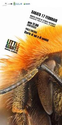 Storie di api e di uomini