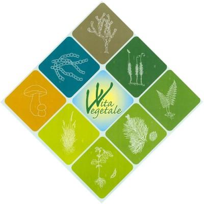 Il Museo Regionale di Scienze Naturali di Torino partecipa alla Giornata Internazionale del Fascino delle Piante