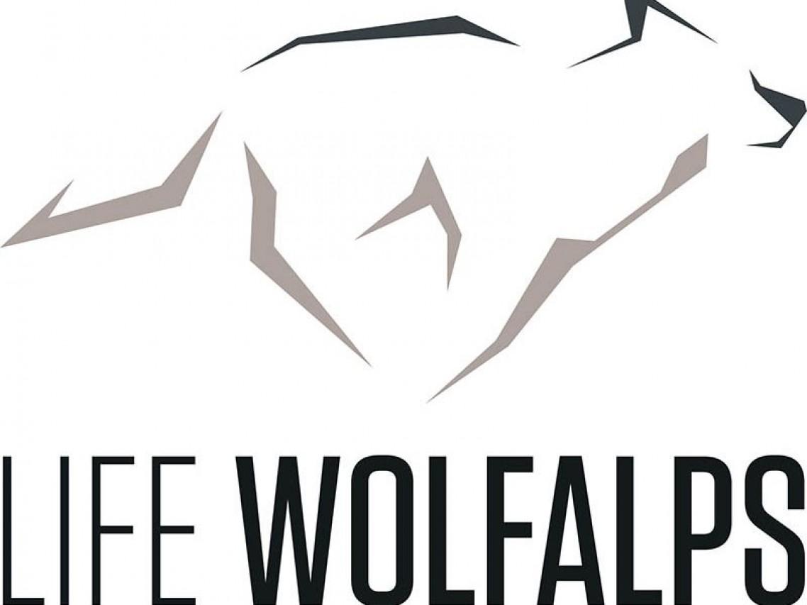 """Concorso di disegno """"Storie di lupi"""""""