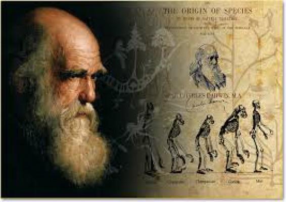 Darwin Day al Museo Dal Lago