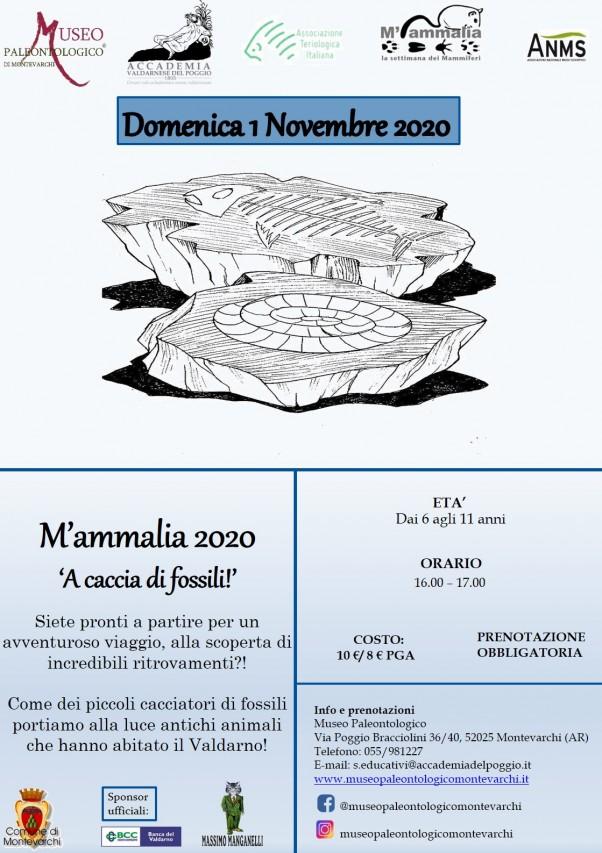M'ammalia 2020 - A caccia di fossili!