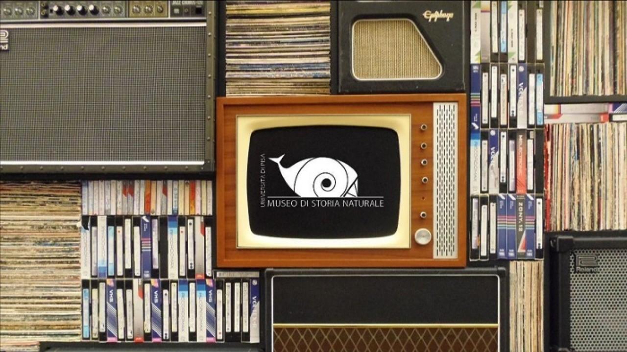 Appuntamenti in tv