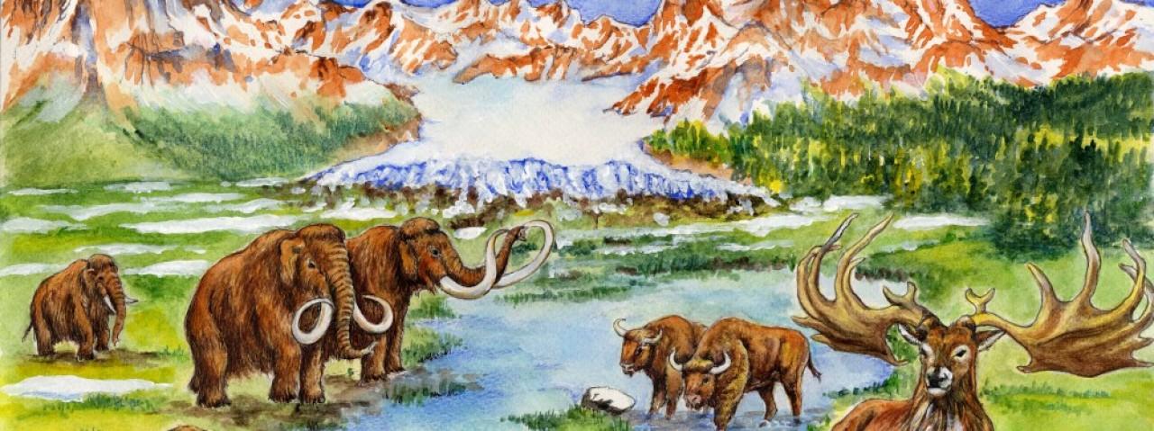 Benvenuti nell'Era Glaciale: come i vertebrati ci aiutano a ricostruire gli ambienti del passato