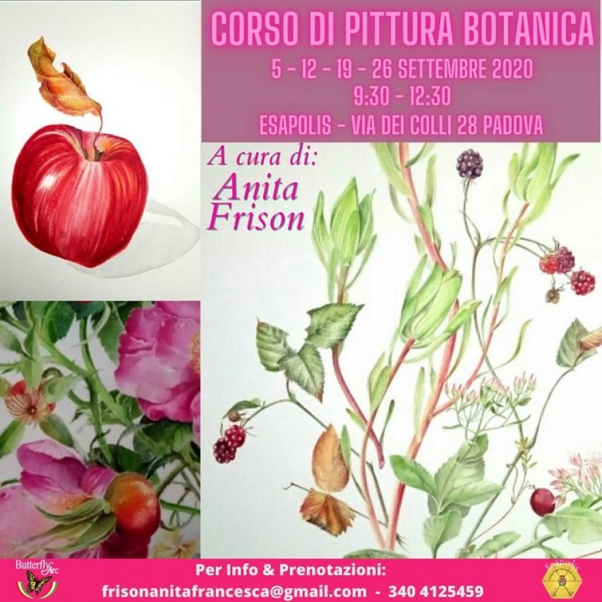Corso di Pittura Botanica per Adulti a cura di Anita Frison