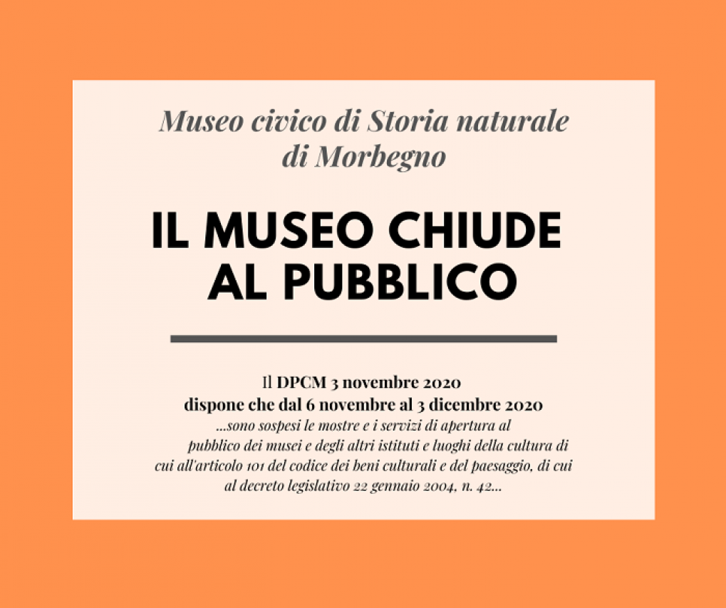 Chiusura del Museo dal 6/11/2020 al 3/12/2020