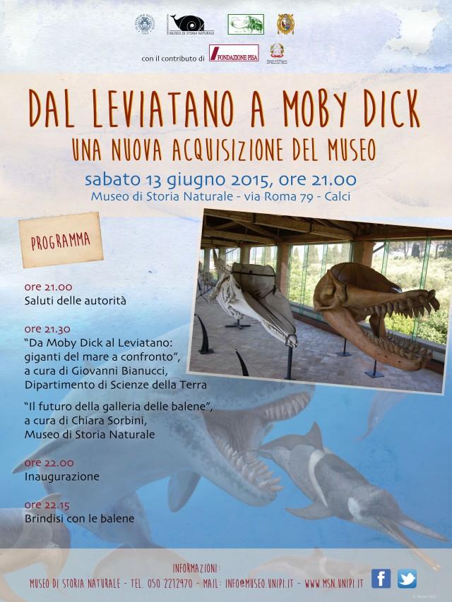 Dal Leviatano a Moby Dick: una nuova acquisizione del Museo
