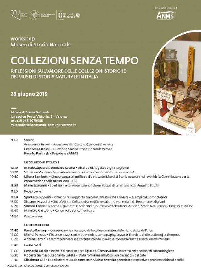 Collezioni senza tempo. Riflessioni sul valore delle collezioni storiche dei musei di storia naturale in Italia