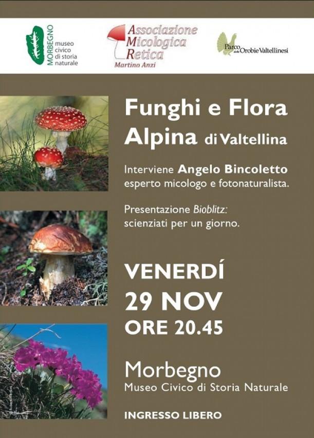 Vuoi scoprire i segreti dei funghi e della flora valtellinese?