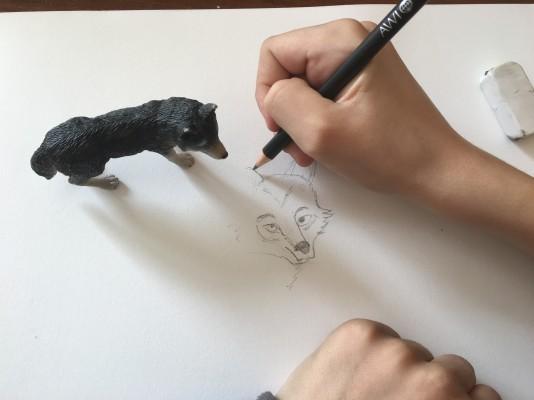 Storie di lupi. Arte e narrazione si incontrano sul tema lupo