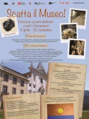 Scatta il Museo! Concorso fotografico al Museo di Storia Naturale   dell'Università di Pisa