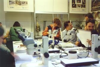 Terzo Corso di tassonomia degli invertebrati terrestri: fauna del detrito vegetale