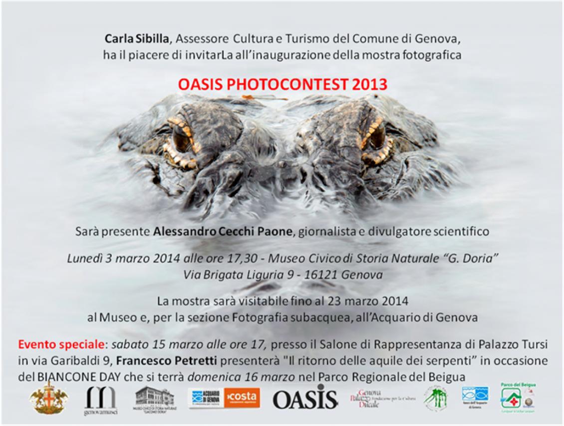 OASIS PHOTOCONTEST 2013