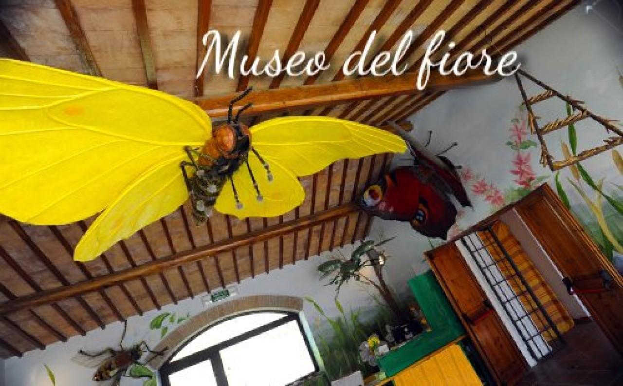 APERTURA ORDINARIA DEL MUSEO DEL FIORE