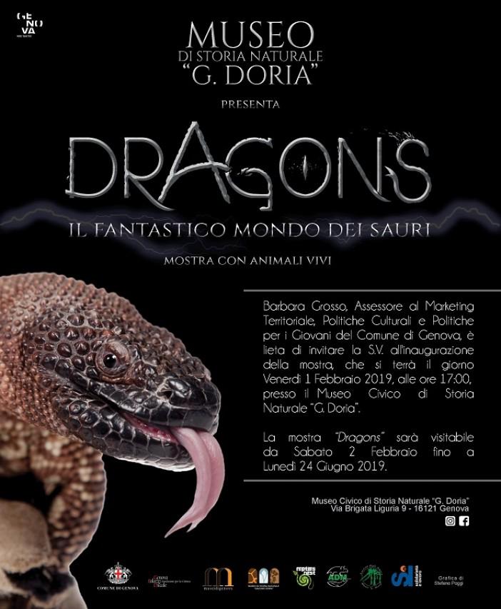 DRAGONS Il fantastico mondo dei Sauri