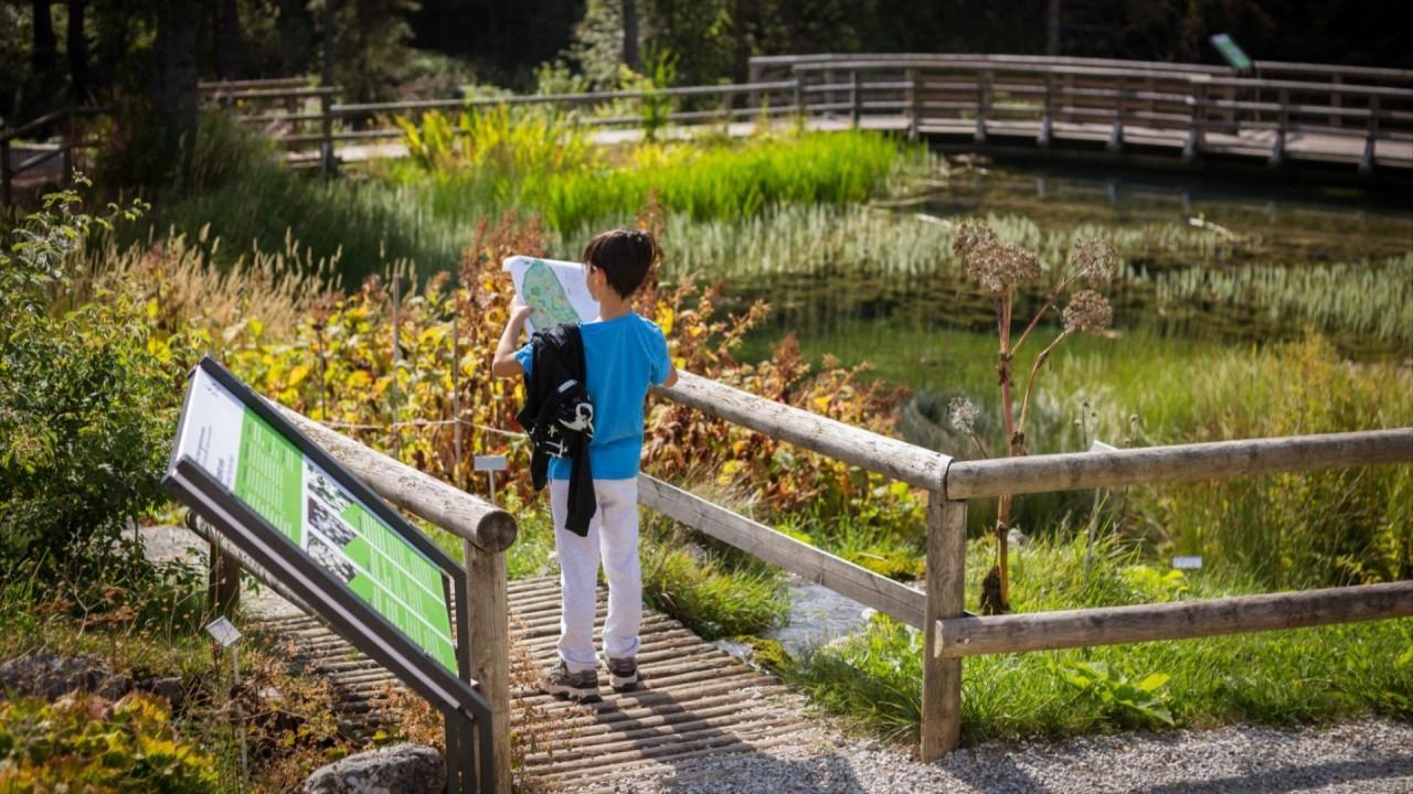 Cortili, parchi e giardini: le nuove aule didattiche del MUSE