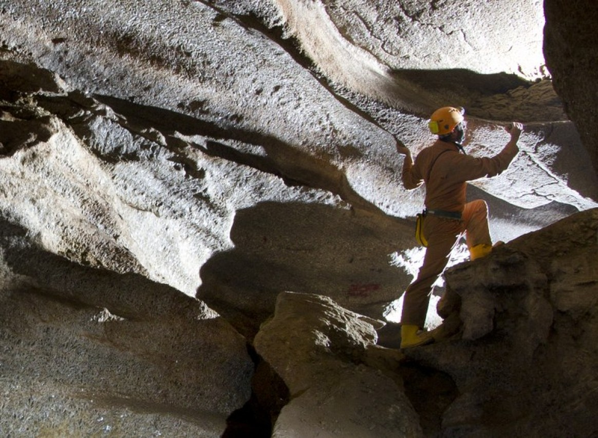 Gutta cavat lapidem. Natura, cultura e storia delle grotte bolognesi