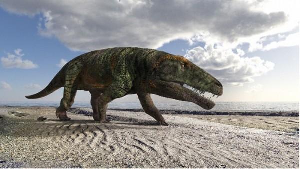 Scoperte orme fossili di grandi rettili sulle Alpi occidentali