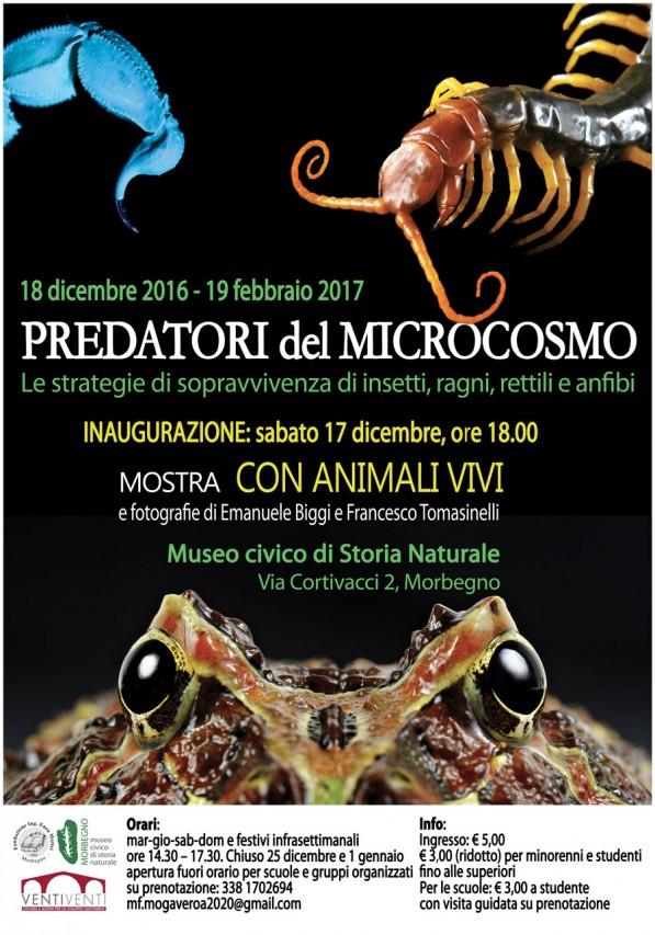 I Predatori del microcosmo